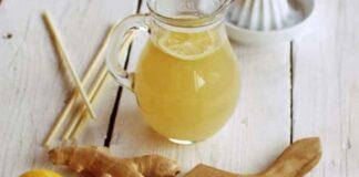 citronnade au gingembre au Thermomix